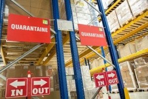 pharma logistics cyberfreight international_in