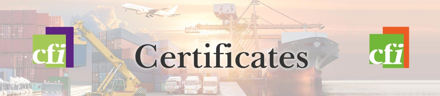 certificates - cyberfreight international & pharmalogisticsl
